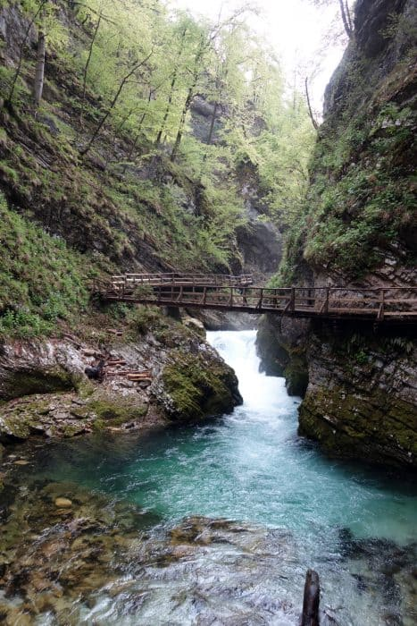 Exploring the Emerald Waters of the mind blowing Vintgar Gorge, Slovenia, things to do in Slovenia, things to do in bled, nature, beautiful, emerald water, adventure, photography, europe, triglav national park, julian alps