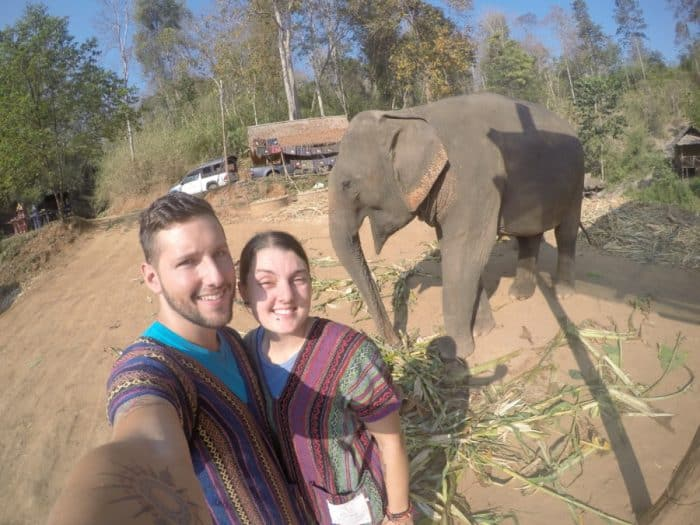 Visiting the beautiful elephants of Chiang Mai at the Elephant Jungle Sanctuary: Selecting the right place to do good rather than harm, ethical, volunteer, help, Elephant Jungle Sanctuary, Elephant Nature Park, help, no riding, swim with elephants, rescue program, Chiang Mai, Thailand, elephant jungle sanctuary Chiang Mai, Why you shouldn't ride elephants, Elephant Sanctuary Thailand, Elephant trekking, Elephant in jungle, Chiang Mai elephant tour, Thailand Elephant,