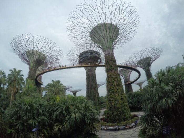 Gardens by the Bay, Singapore, free, budget, things to do, what to see, must do, must see, what to do in Singapore, Marina Bay,
