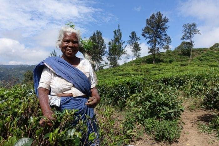 Backpacking Sri Lanka: The ultimate guide to a budget Sri ...